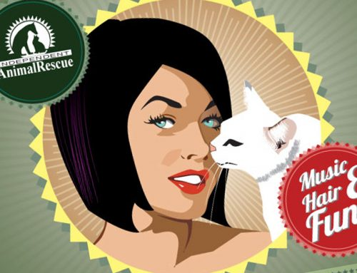 Independent Animal Rescue Event Flyers